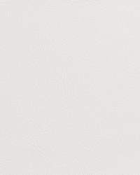 V131 White by