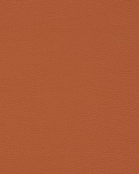 Orange Ultrahyde III Fabric  V203 Sienna