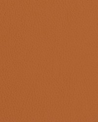 V427 Burnt Sienna by