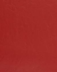 V461 Cardinal by