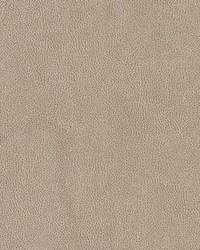 V500 Sandstone by