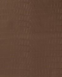 V591 Chocolate by