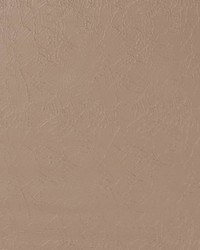 V604 Taupe by