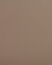 V641 Taupe by