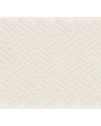 Berkeley Tape Ivory by  Schumacher Trim