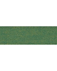 Ashwood Tape Green by  Schumacher Trim