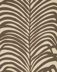 Zebra Palm Java by