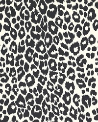 Iconic Leopard Graphite by
