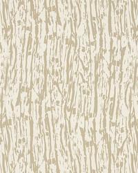 Tree Texture Natural by  Schumacher Wallpaper