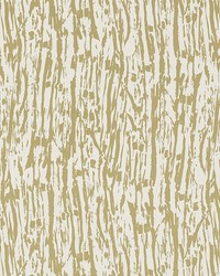Tree Texture Pale Gold by  Schumacher Wallpaper