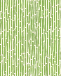 Bamboo Spring by