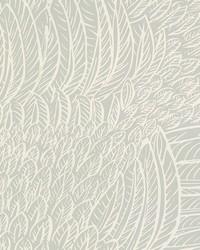 Featherfest Smoke by  Schumacher Wallpaper