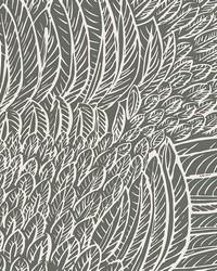 Featherfest Slate by  Schumacher Wallpaper