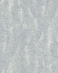 Drizzle Dove by  Schumacher Wallpaper
