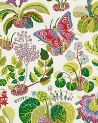 Exotic Butterfly Multi by  Schumacher Wallpaper