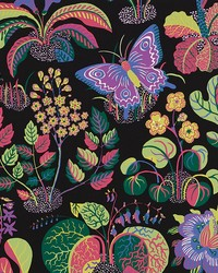 Exotic Butterfly Black by  Schumacher Wallpaper