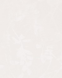 50056w Collina Paperwrite 01 by
