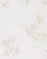 50073w Jacinth Silvermist 01 by