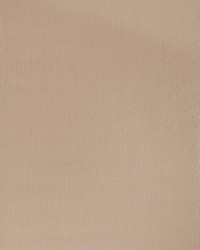 50136w Tibraza Porcini 02 Wallpaper by  Fabricut Wallpaper