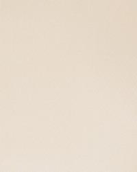 50129w Lugaro Seashell-01 Wallpaper by  Fabricut Wallpaper