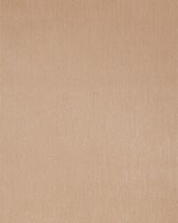 50134w Zira Noisette 03 Wallpaper by  Fabricut Wallpaper