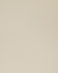 50121w Madaka Wasabi-01 Wallpaper by  Fabricut Wallpaper