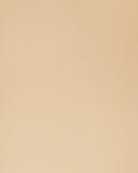 50121w Madaka Wheat 02 Wallpaper by  Fabricut Wallpaper