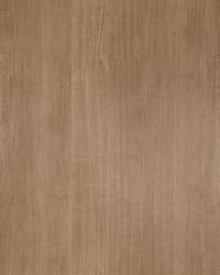 50123w Taverni Sparrow-01 Wallpaper by  Fabricut Wallpaper