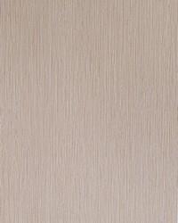 50142w Biri Chamois 01 Wallpaper by  Fabricut Wallpaper