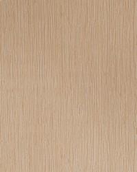 50142w Biri Desert 02 Wallpaper by  Fabricut Wallpaper
