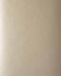 50225w Aldrich Sand 02 by  Fabricut Wallpaper
