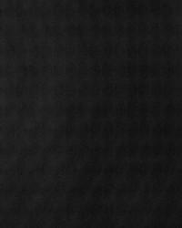50248w Silverlake Toucan 01 by  Fabricut Wallpaper