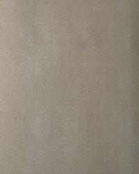 50248w Silverlake Spelt 03 by  Fabricut Wallpaper