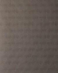 50248w Silverlake Tamarind 06 by  Fabricut Wallpaper