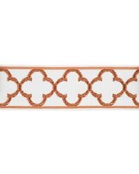 03317 Orange Tape Braid by