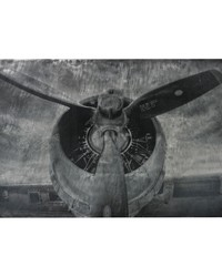 Alton-World War II Airplane Print Etched Print On Aluminum by