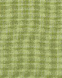 Green Circles and Swirls Fabric  Keeley 244 Acid Green
