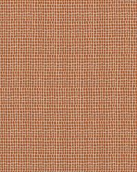 Orange Circles and Swirls Fabric  Keeley 320 Orange