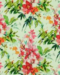 Pink Modern Floral Fabrics  Nadine 722 Fuchsia