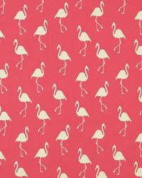 Sdflamingo 787 Begonia Pink by