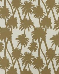 SD little Palm 13 Raffia by