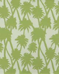SD little Palm 251 Island Green by
