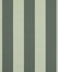 Wide Stripe Fabric  SD polo Stripe 191 Pearl Gray