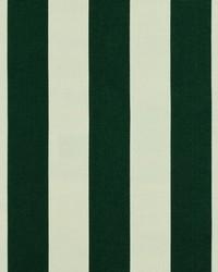 Green Wide Stripe Fabric  SD polo Stripe 247 Foilage