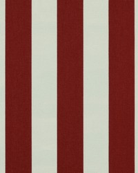 Red Wide Stripe Fabric  SD polo Stripe 343 Lobster