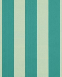 Wide Stripe Fabric  SD polo Stripe 509 Surf