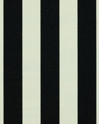 Black Wide Stripe Fabric  SD polo Stripe 947 Noir