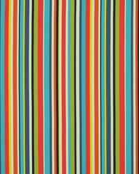 Sdreef Stripe 100 Multi by