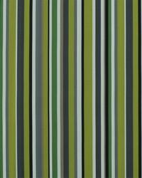 Sdreef Stripe 244 Acid Green by