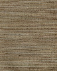 Tussah 118 Sandstone by